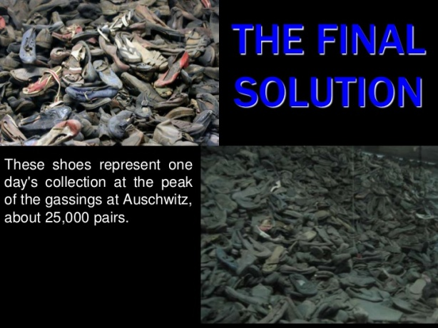 the-final-solution-1-728